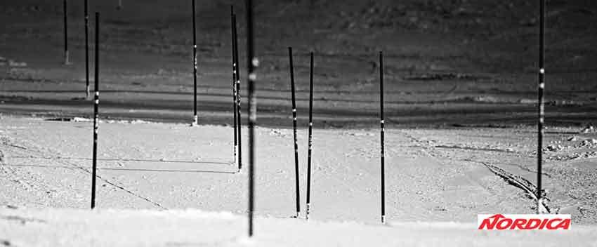 Nordica-Ski